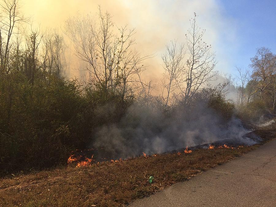 Fire crews battled a fire along Pine Bower Rd. Thursday. (contributed by Rita Carter)